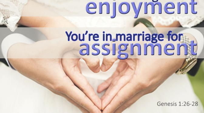 You're in Marriage for Assignment